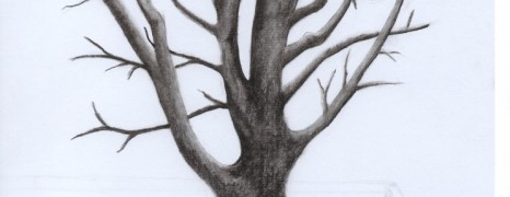 Sketch – Tree (incomplete)